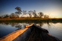 Mokorofahrt im Okavango