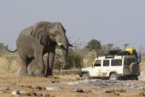 Jeep Safari Botswana