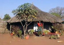 Traditionelle Hütte in Sambia